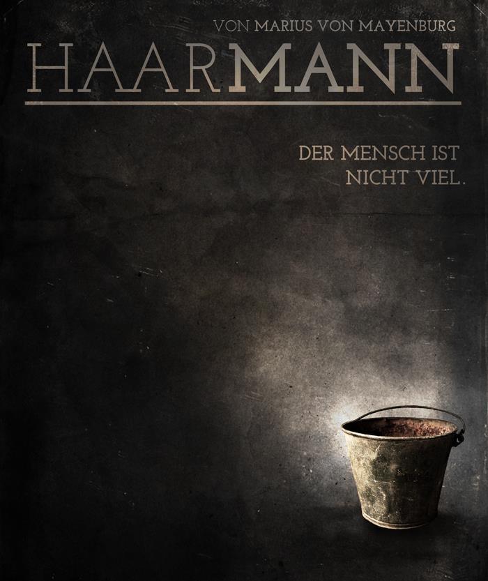 HAARMANN (2013)